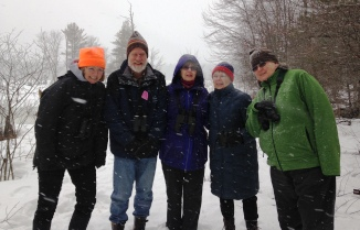 Intrepid Boxborough Birders in the snow. Photo by Rita Grossman.