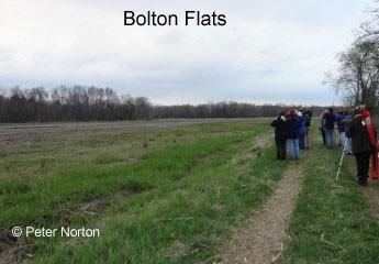 Boxborough Birders at Bolton Flats